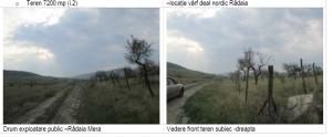 teren7200mp_livada